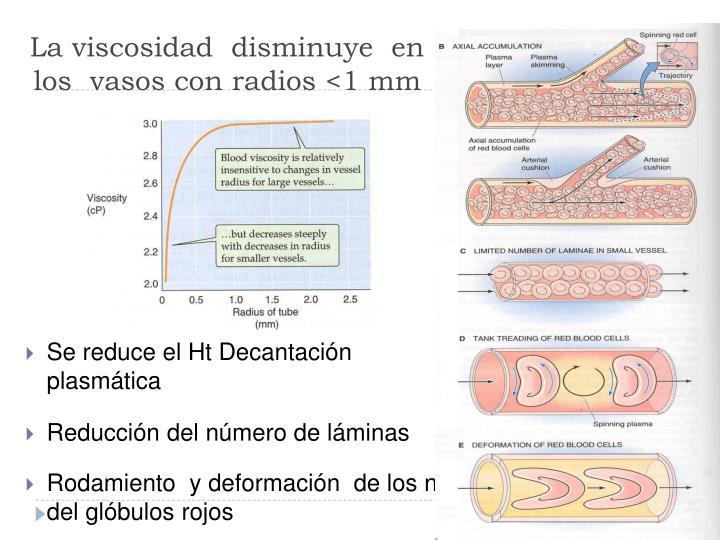 La viscosidad  disminuye  en los  vasos con radios <1 mm