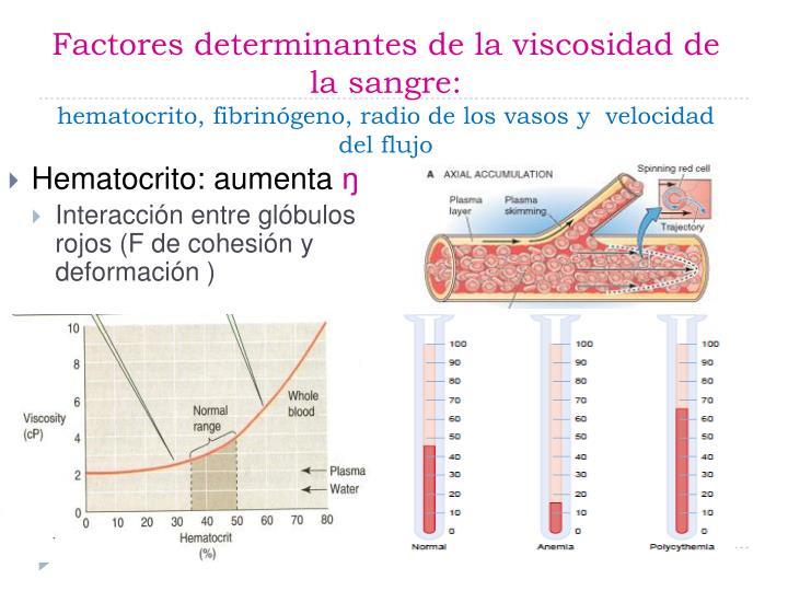 Factores determinantes de la viscosidad de la sangre: