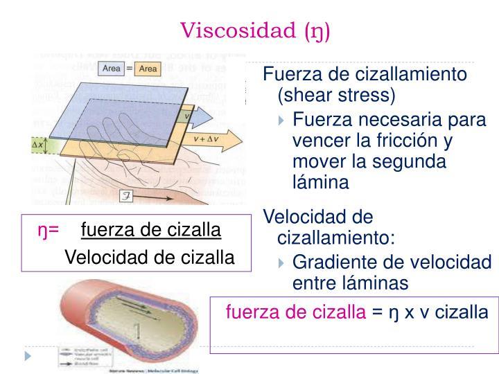 Viscosidad (