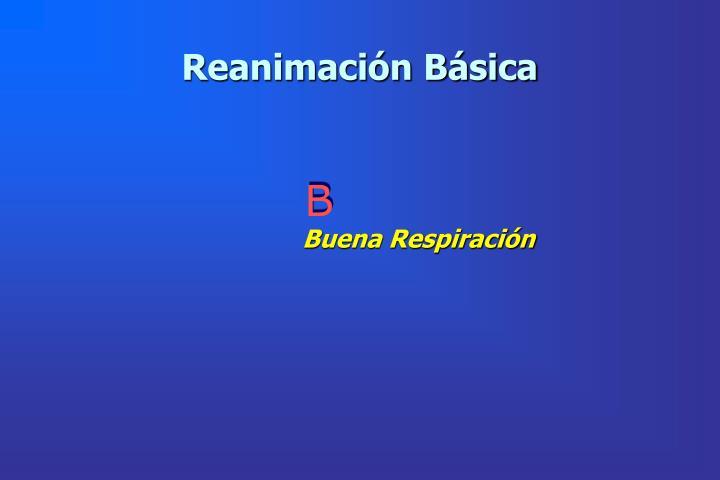 Reanimación Básica