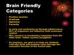 brain friendly categories