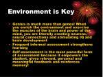 environment is key