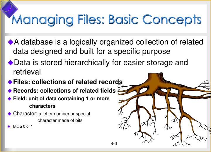 Managing files basic concepts