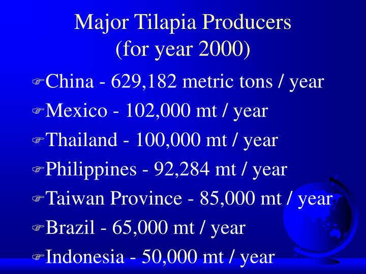 Major Tilapia Producers