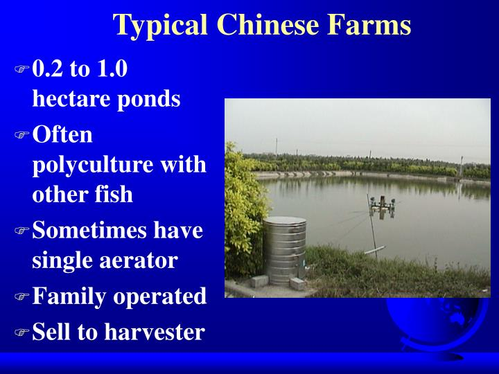 Typical Chinese Farms