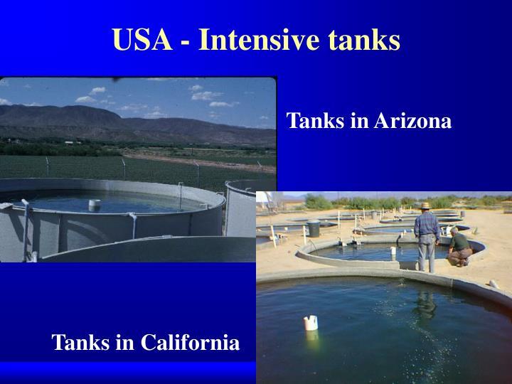 USA - Intensive tanks