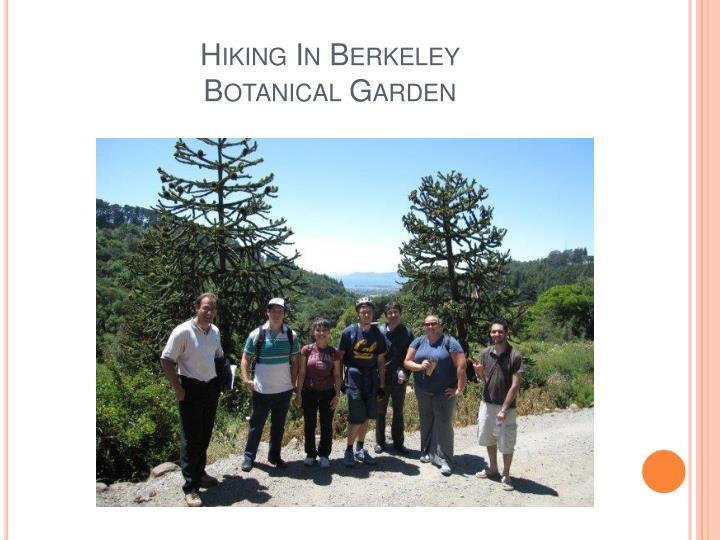 Hiking In Berkeley