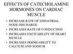 effects of catecholamine hormones on cardiac muscle