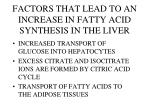 factors that lead to an increase in fatty acid synthesis in the liver