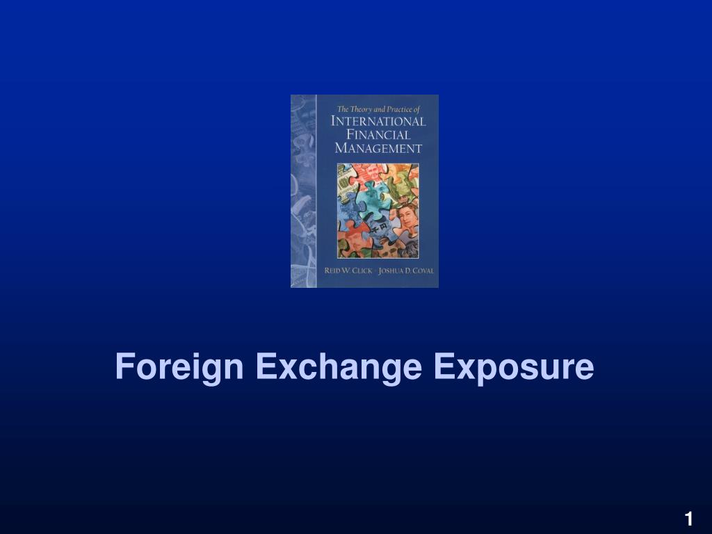 foreign exchange exposure l.