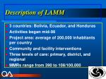 description of lamm