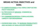 broad actesa objectives and goal
