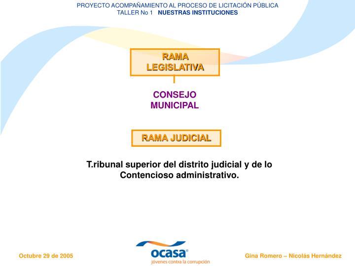 PROYECTO ACOMPAÑAMIENTO AL PROCESO DE LICITACIÓN PÚBLICA