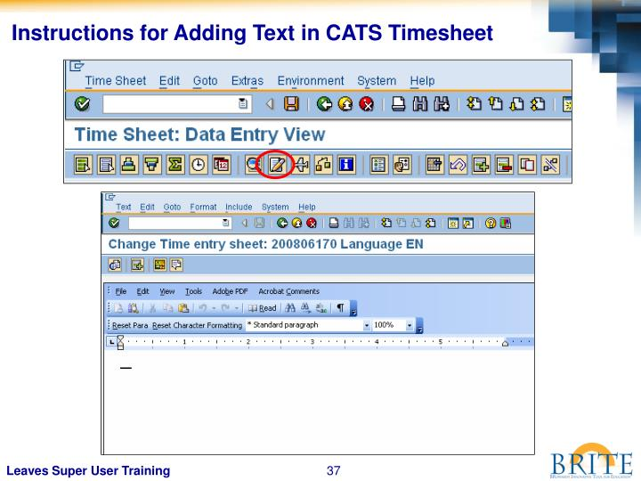 Instructions for Adding Text in CATS Timesheet