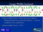 large pgms isolated