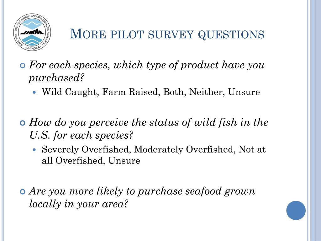 More pilot survey questions