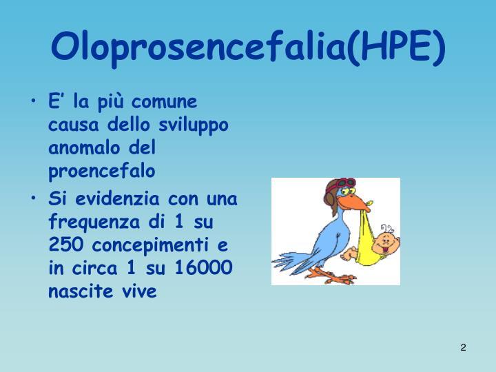 Oloprosencefalia hpe1