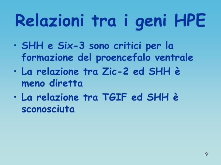 Relazioni tra i geni HPE