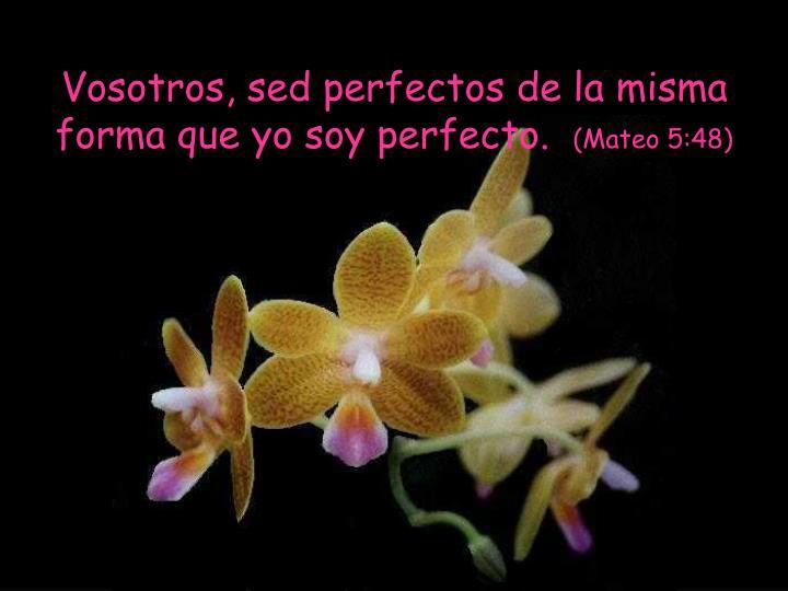 Vosotros, sed perfectos de la misma forma que yo soy perfecto.