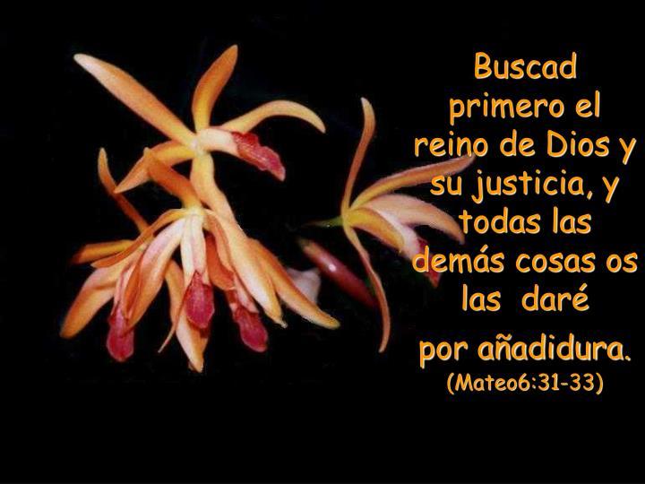 Buscad primero el reino de Dios y su justicia, y todas las demás cosas os las  daré