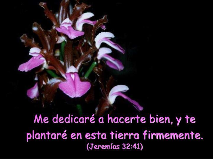 Me dedicaré a hacerte bien, y te plantaré en esta tierra firmemente.