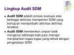 lingkup audit sdm