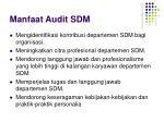 manfaat audit sdm