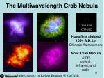 the multiwavelength crab nebula