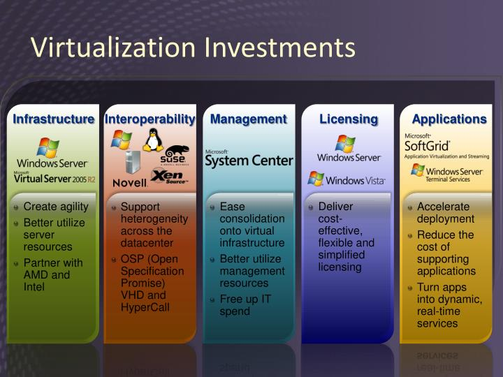 Virtualization Investments