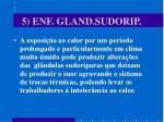 5 enf gland sudorip1
