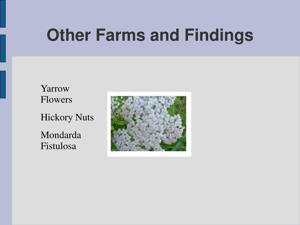 Other Farms and Findings