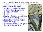cont variations in breathing structures