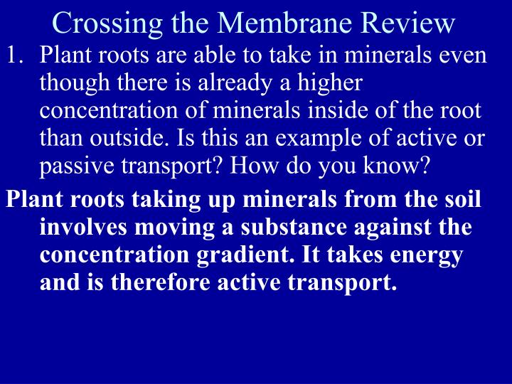 Crossing the Membrane Review