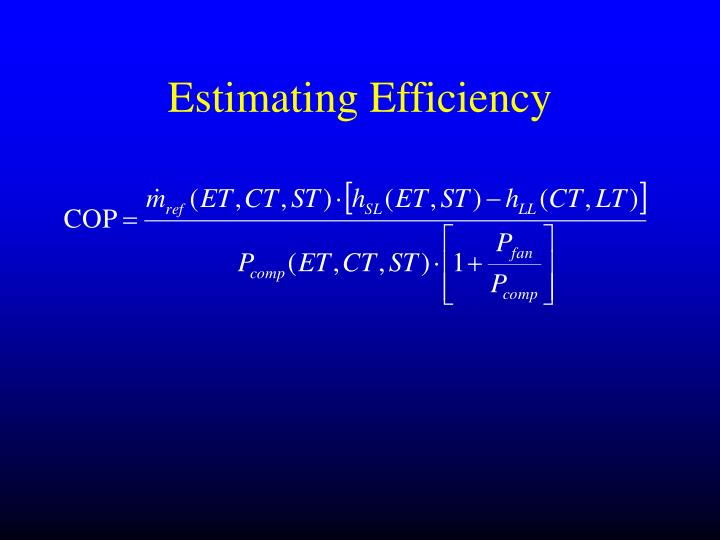 Estimating Efficiency