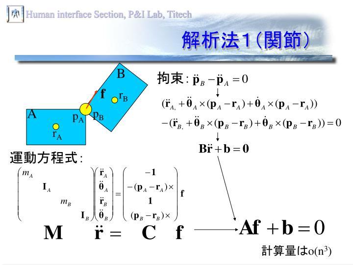 解析法1(関節)