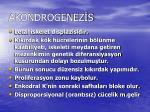 akondrogenez s