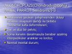 akondroplaz chondrodystrophia fetalis parrot sendromu 3
