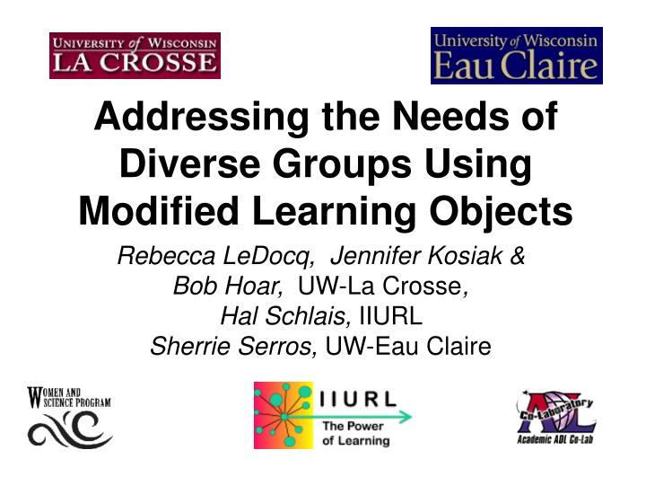 addressing the needs of diverse groups using modified learning objects n.