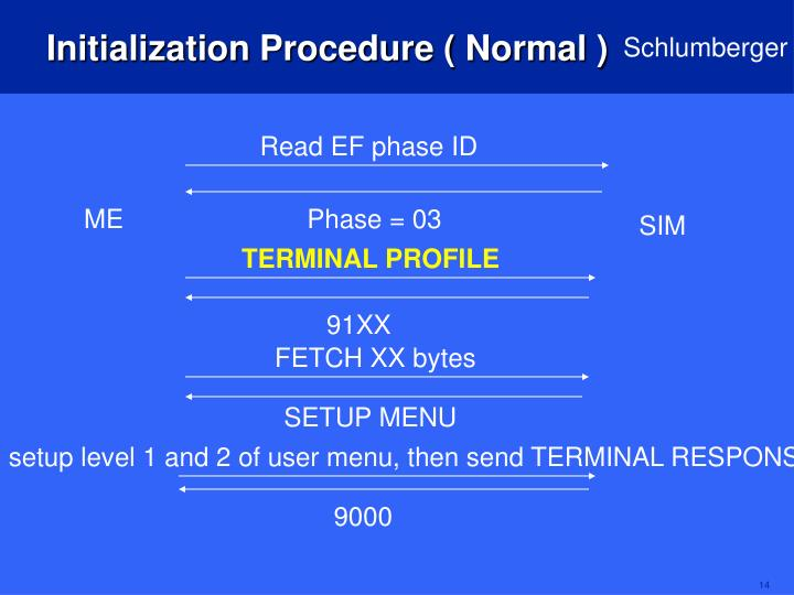 Initialization Procedure ( Normal )