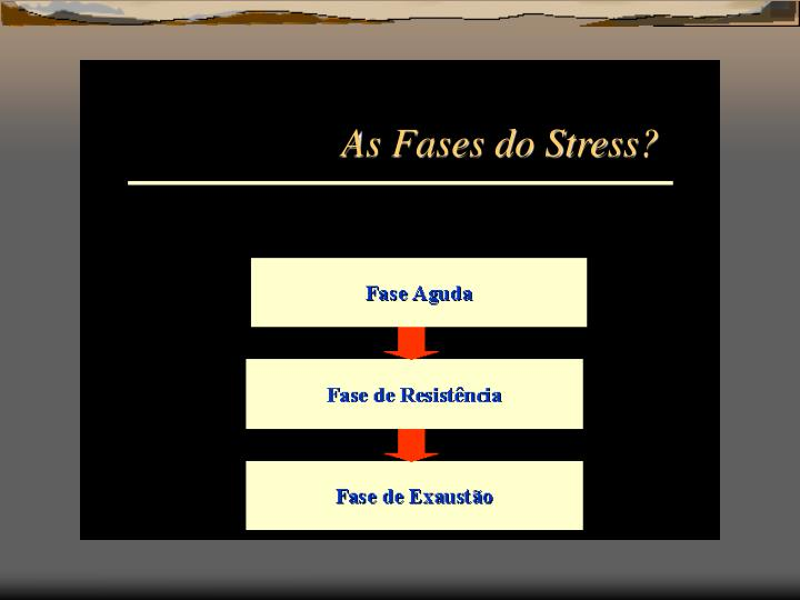 As Fases do Stress?