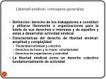 libertad sindical conceptos generales1