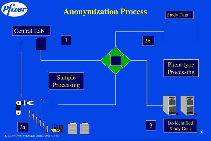Anonymization Process