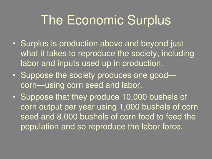 The Economic Surplus
