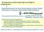 entrapment and arrested fight and flight in depression