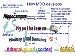 how mdd develops