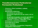 transformaciones particulares formaci n profesional
