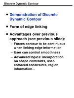 discrete dynamic contour
