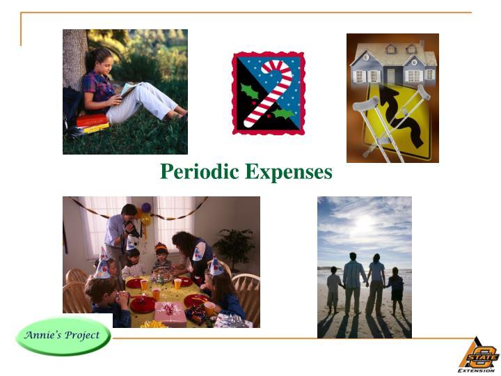 Periodic Expenses