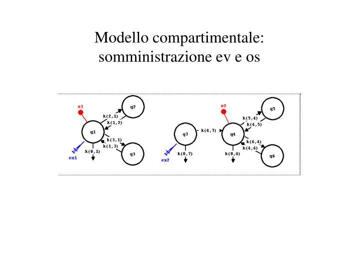 Modello compartimentale: