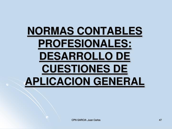 NORMAS CONTABLES PROFESIONALES:
